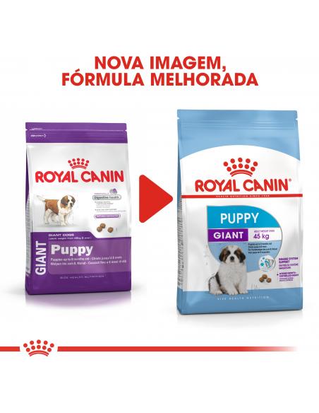 Royal Canin SHN Giant Puppy Alimento Seco Cão