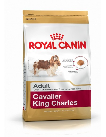Royal Canin Breed Health Nutrition Cavalier King Charles Adult Alimento Seco Cão