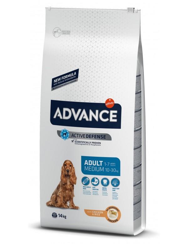 Advance Medio Adulto Alimento Seco Cão