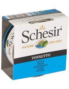 Schesir Nature Atum Alimento Humido Cão
