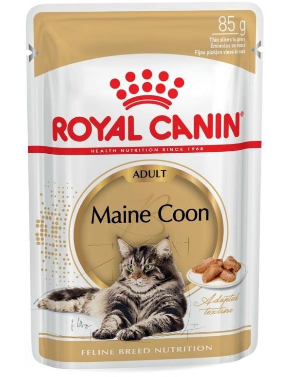 Royal Canin Gato Maine Coon