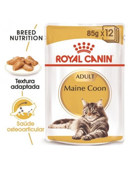 Royal Canin FBN Maine Coon Alimento Húmido Gato Saquetas