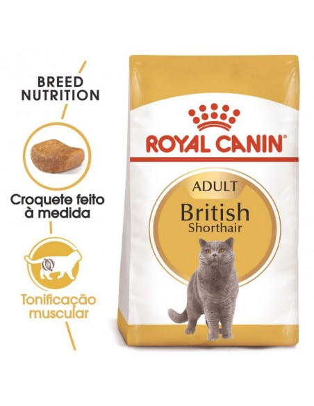 Royal Canin FBN British Shorthair Adult Alimento Seco Gato
