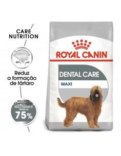Royal Canin SHN Maxi Dental Care Alimento Seco Cão