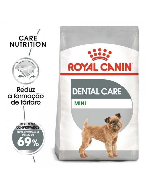 Royal Canin SHN Mini Dental Care Alimento Seco Cão