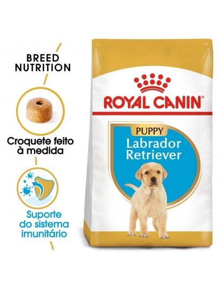 Royal Canin BHN Labrador Retriever Puppy Alimento Seco Cão