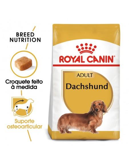 Royal Canin BHN Dachshund Adult Alimento Seco Cão