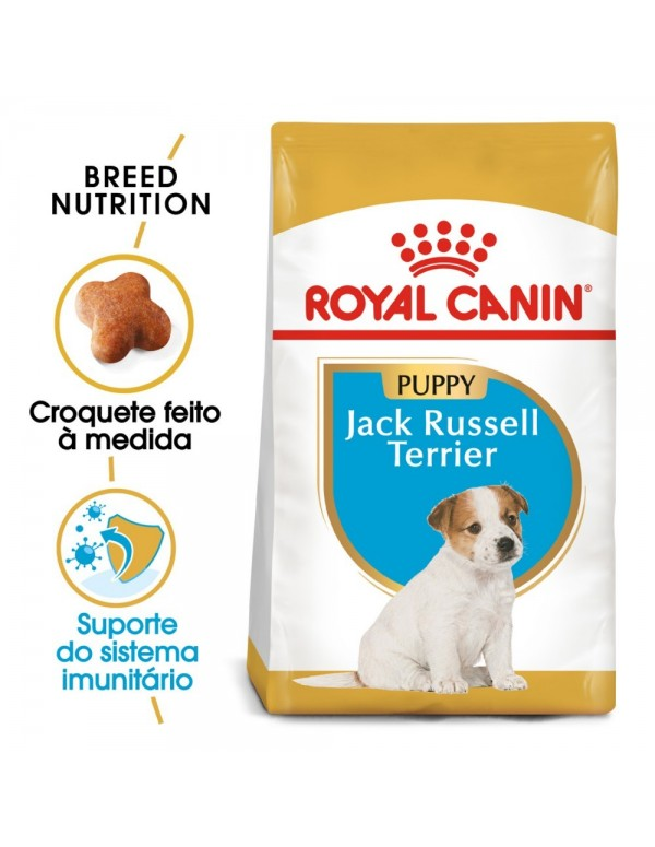 Royal Canin BHN Jack Russell Terrier Puppy Alimento Seco Cão