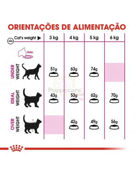 Royal Canin FHN Exigent Savour Sensation Alimento Seco Gato